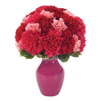 Contemporary carnations bud vase (BF118-11KM)